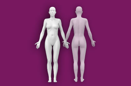 Interactive Female Anatomy - Front / Back